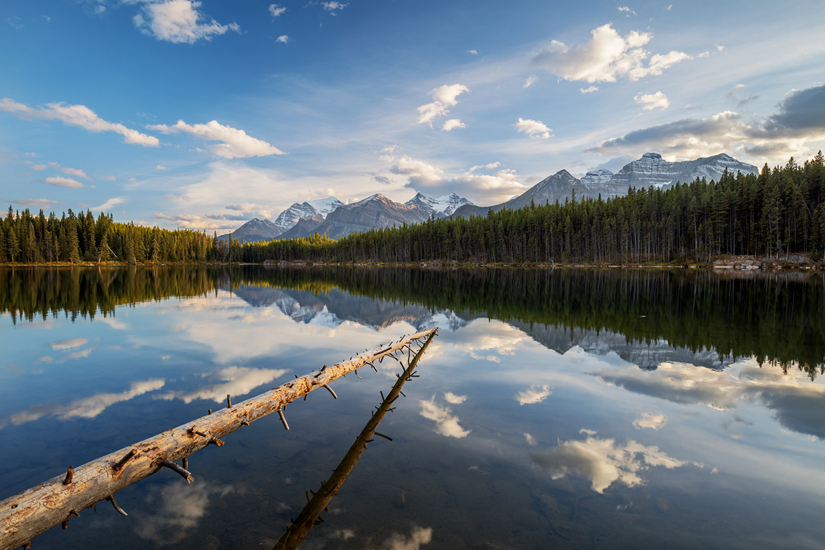 Vermilion Lakes, Day 2 / Banff